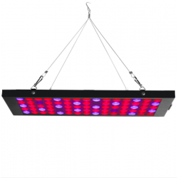 Egrow GL-2 40W LED grow light lamp with red blue UV & IR spectrum